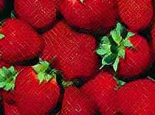 Клубника: что это за ягода?