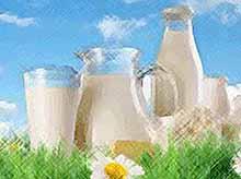 Кубань вошла в число регионов-лидеров по производству молока в  России
