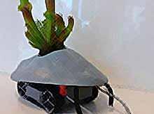 Роботы для Ваших комнатных растений (видео)
