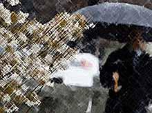Начало недели на Кубани будет снежным и дождливым