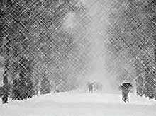 Морозы на Кубани усилятся до -25°