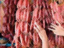 """Ученые создали синтетическое мясо: первые""""искусственные"""" сосиски появятся весной 2012 года (видео)"""