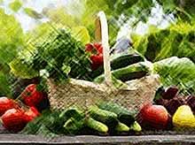 В России примут  закон об органическом сельском хозяйстве