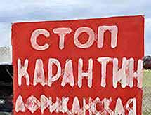 В Тимашевске  продолжают борьбу с африканской чумой свиней (видео)