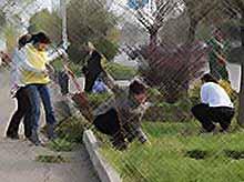 В Тимашевске продолжается генеральная уборка города.