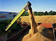 В России собрано почти 95 млн тонн зерна.