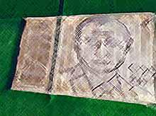 Фермер из Италии нарисовал на поле огромный портрет Путина перед саммитом G20