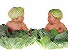 На Кубани увеличилась рождаемость.