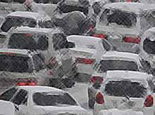 Снег и ветер парализовали Краснодар