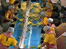 """Сотрудников """"Бондюэль-Кубань"""" и """"Кубанские консервы"""" в Тимашевске застраховали на 420 млн рублей."""