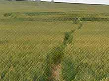 Жителей Украины напугали таинственные круги на полях.. (видео)