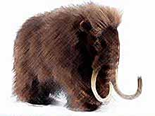 К 2015 году японцы попытаются возродить мамонтов