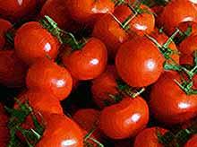 Почему Россельхознадзор не пустит в Россию турецкие помидоры