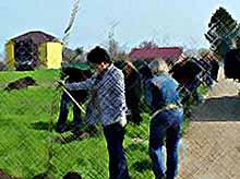 """Компания \""""Нестле Кубань\""""  приняла участие в озеленении Тимашевска"""
