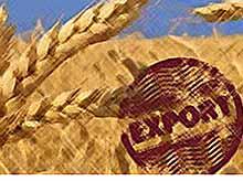 В России экспорт сельхозпродукции увеличился на 21,1%, превысив 20,7 млрд долларов