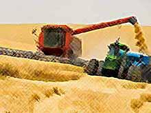 Государство поможет сельхозпроизводителям застраховать урожай.