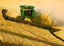 Россия побила рекорд времен Советского Союза по производству зерна