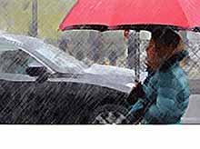 На Кубани ожидаются дожди  и мокрый снег.