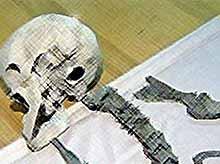 На Ставрополье археологи нашли человекобарана и мегаконя  (видео)