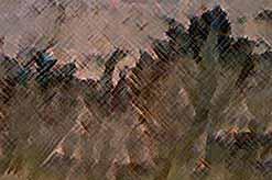 На Марсе обнаружены соленые ручьи (ВИДЕО)