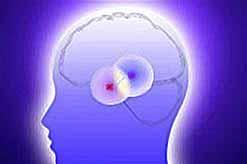 """У человека может быть шестой \""""магнитный\"""" вид восприятия внешней среды"""