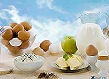 В Краснодарском крае выросло производство молока и яиц
