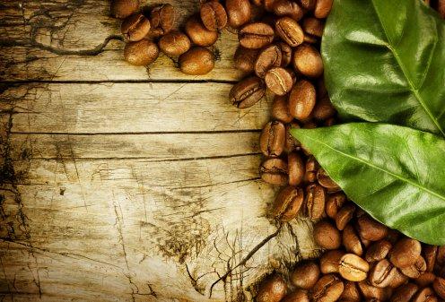 Ученые открыли «кофейный чай»