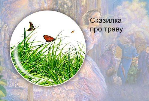 Ева Орловская. Сказилка про траву
